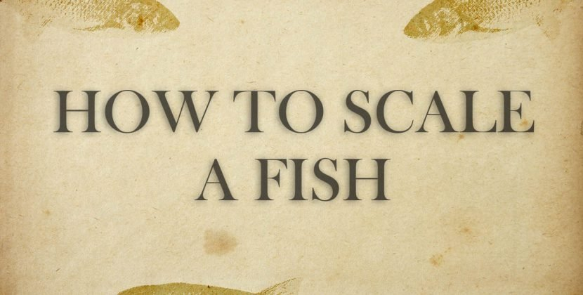 How To Scale A Fish