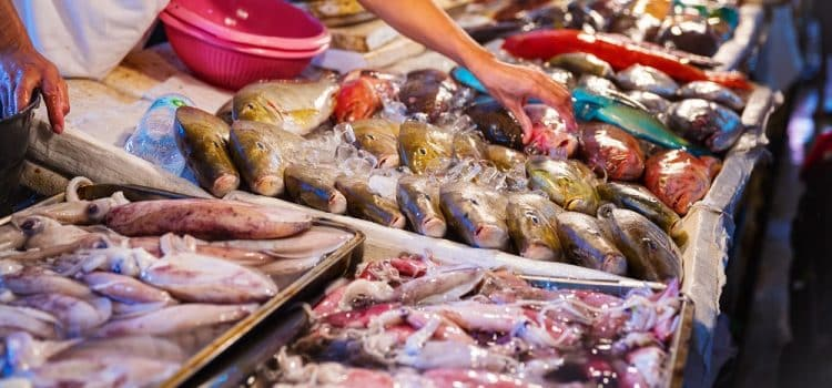 What Are the Best Fish to Eat in the Philippines?