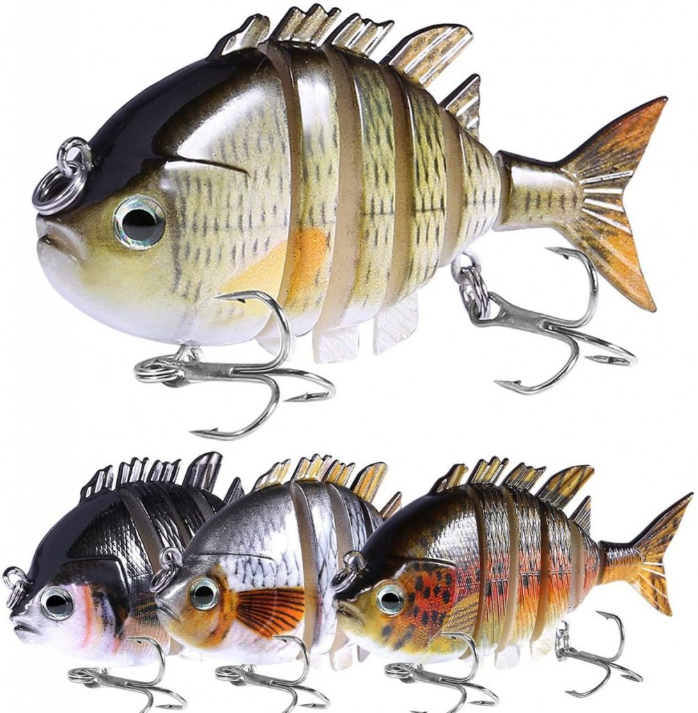 What Fish Are In Australia?