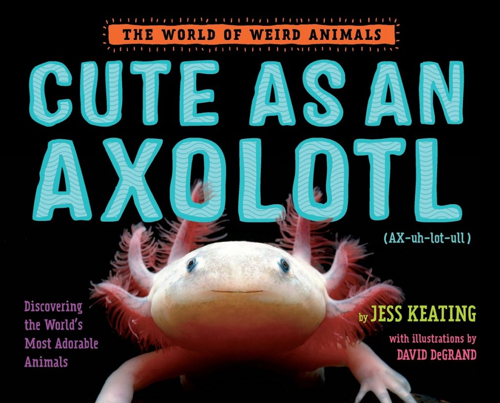 Can I Take My Axolotl Out Of Water?