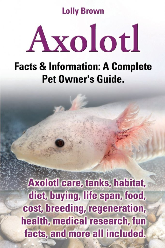 Do Axolotls Play Dead?