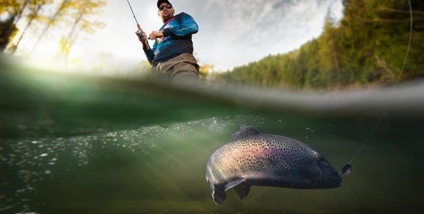 Is It Illegal To Catch And Release Fish Without A License?