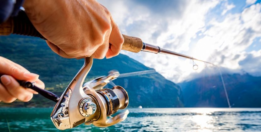What Reels Do Pro Bass Fishermen Use?