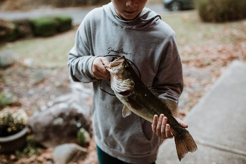 This Is The Best Time To Catch A Bass